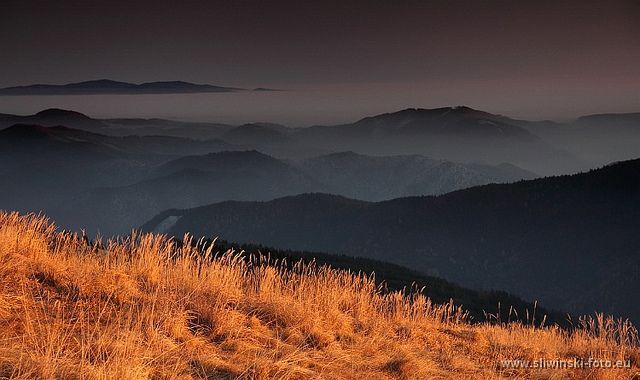 The grass is 'burning'. Greater Fatra, Slovakia. www.simplycarpathians.com