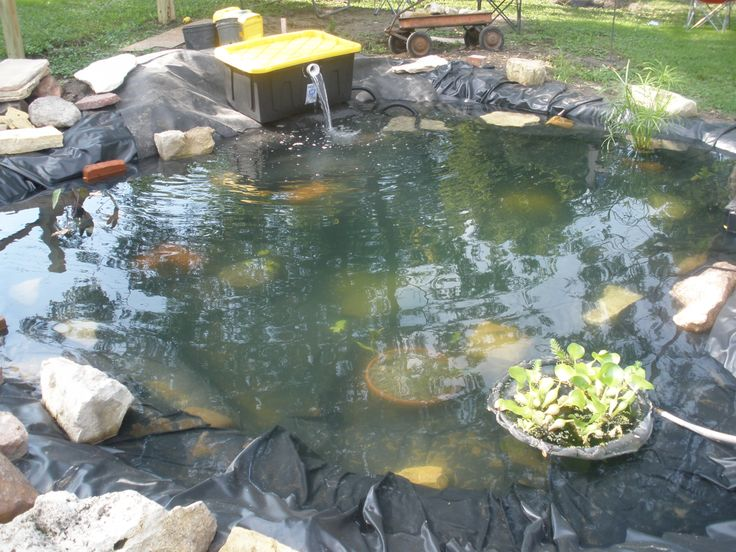 1000 images about pond filters on pinterest backyard for Outside pond filter