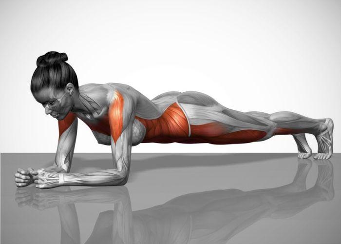 """Día 3 y  5:  Aguanta en esta posición """"plancha"""" durante 20"""". Repite 3 veces."""