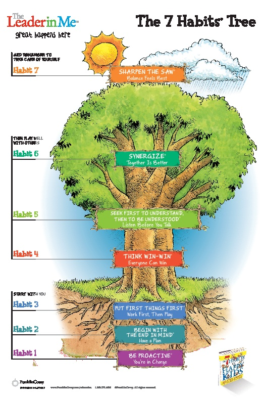 78 ideas about 7 habits tree on pinterest 7 habits for 7 habits tree mural