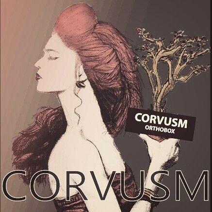 CORVUSM ORTHOBOX the lady