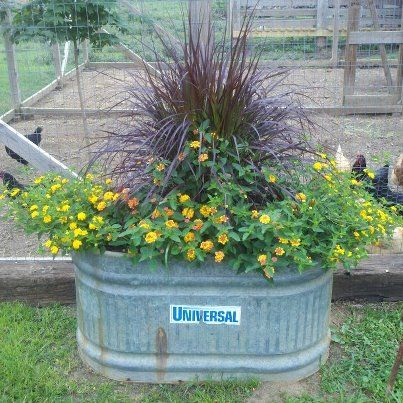 Find This Pin And More On Galvanized Water Trough Gardens