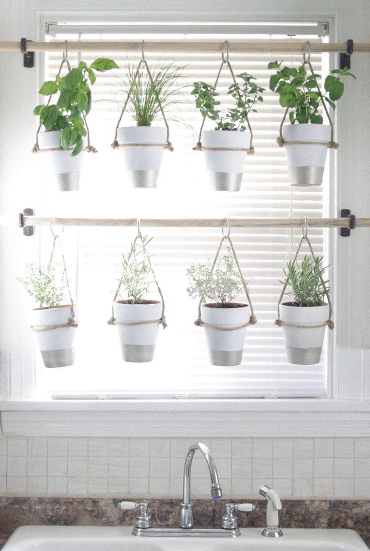 hanging window herb garden