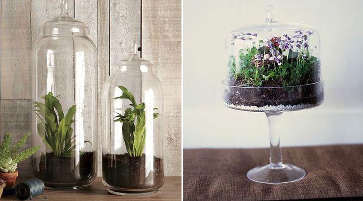 5 fina glasdekorationer för dina växter