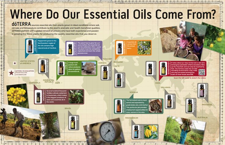 Where Do Our Oils Come From? I am so proud that the company I am a part of takes care of the people in the places they source the oils from. If you want to be a part of something wonderful contact me at mydoterra.com/chee