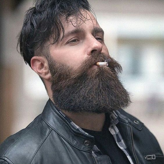 mens hair styles 68 best beard styles images on beard styles 4259