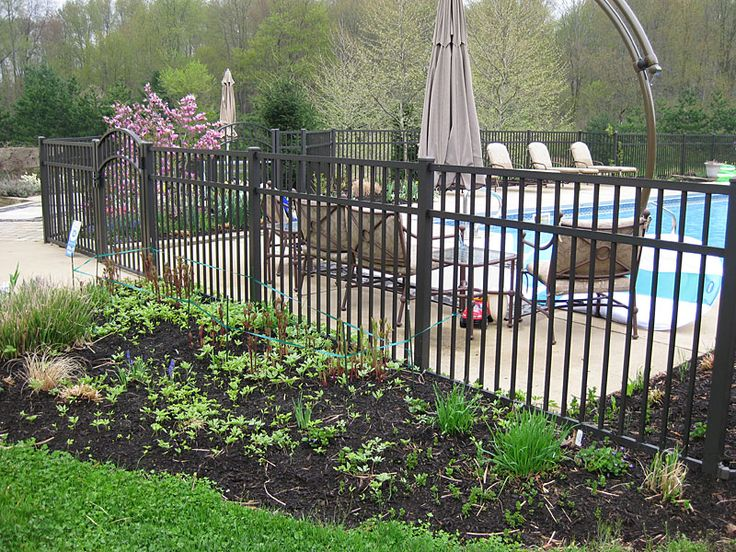 Aluminum Pool Fence 4' Love the landscaping on outside of fence as well