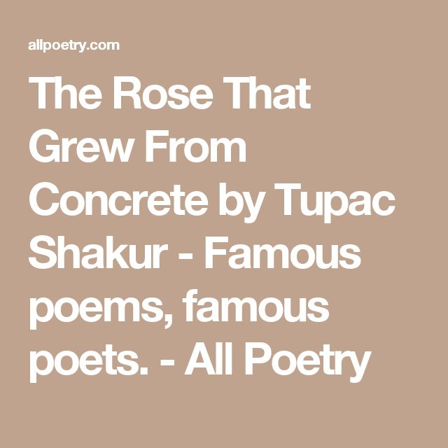 25 best classical conversations images on pinterest classical the rose that grew from concrete by tupac shakur famous poems famous poets fandeluxe Image collections