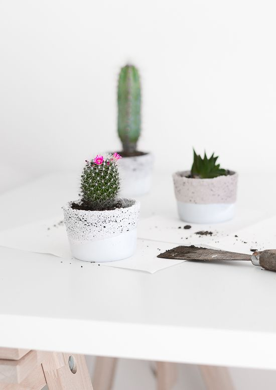 Ikea glass containers into planters!