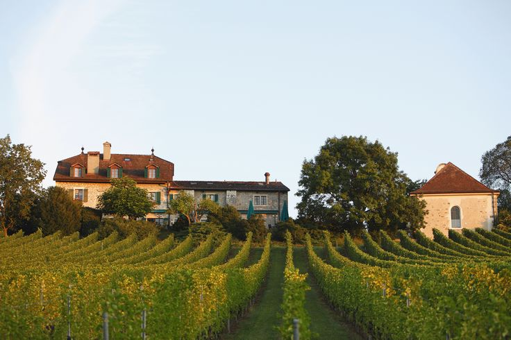 Domaine de Châteauvieux, Satigny, Switzerland. #RelaisChateaux