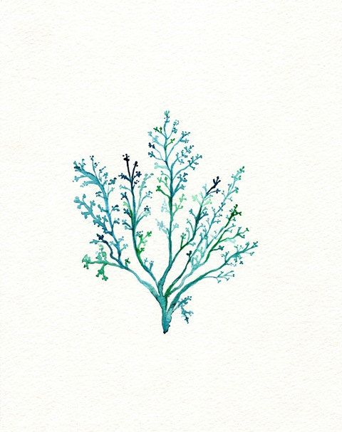 No.1 Sea Fern/ watercolor print / teal / light green / aqua / sea / ocean life /