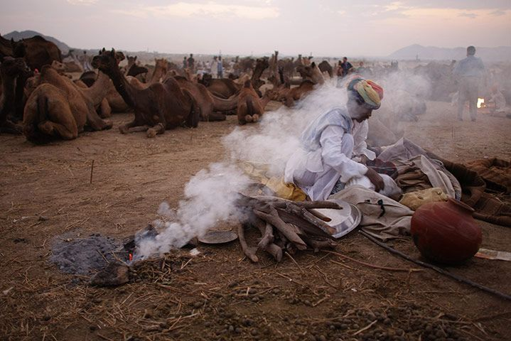 Credit: Andrew Caballero-Reynolds/AFP/Getty Images Pushkar, India: A herder rests at the end of the day during a camel fair