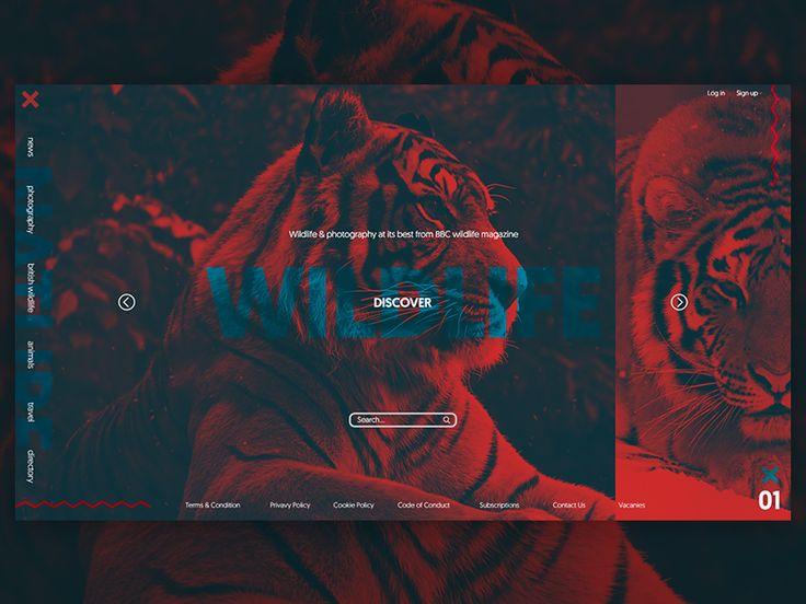 Wild Life Webpage