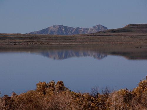 Best Antelope Island Ideas On Pinterest - Ut usa