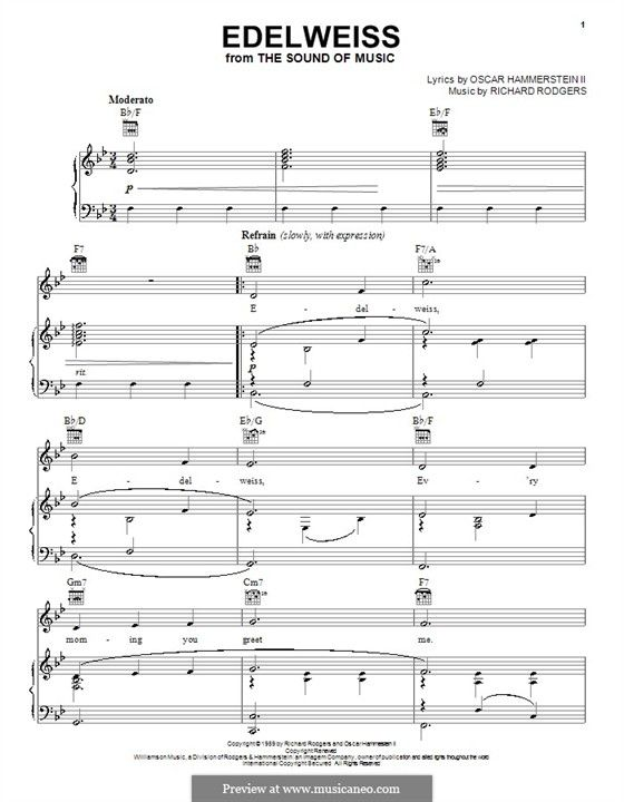 35 best printable images on Pinterest Music sheets, Sheet music - music paper template