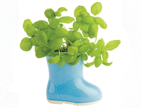 ceramic boot contains everything to grow a mini-garden...Boots Gardens, Gift Ideas, Gardens Kits, Ceramics Boots, Boots Planters, Ceramic, Products, Baby Boots, Rainy Days