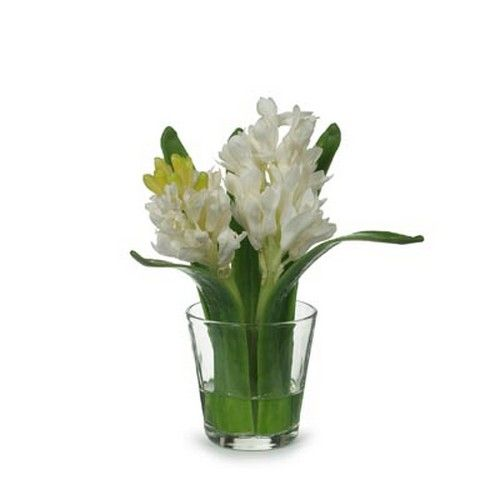 Hyacinth in Glass White (17H cm) RRP $30