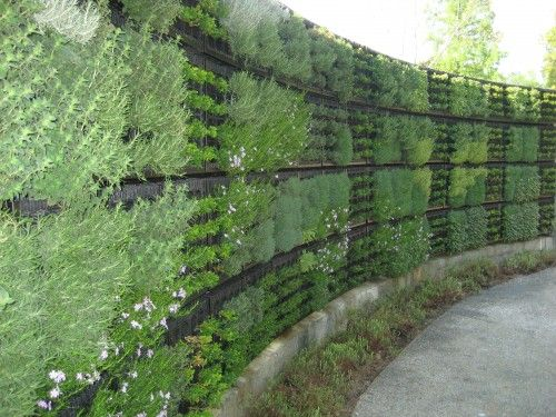 Create your own living wall with a combo of pallets and cloth grow bags.