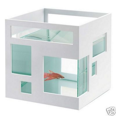 17 best images about betta fighter fish tank ideas on for Umbra fish hotel