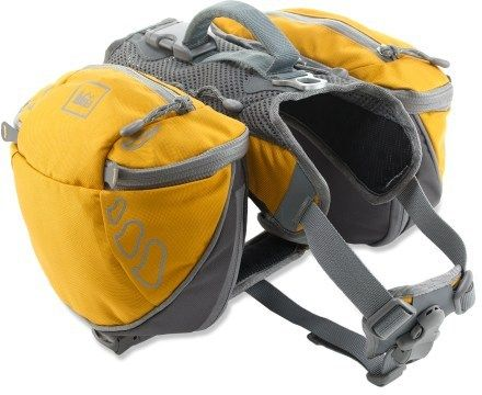 REI Ultra Dog Pack.  If I ever take a dog on a hiking trip.  It will be packing it's own supplies for sure.