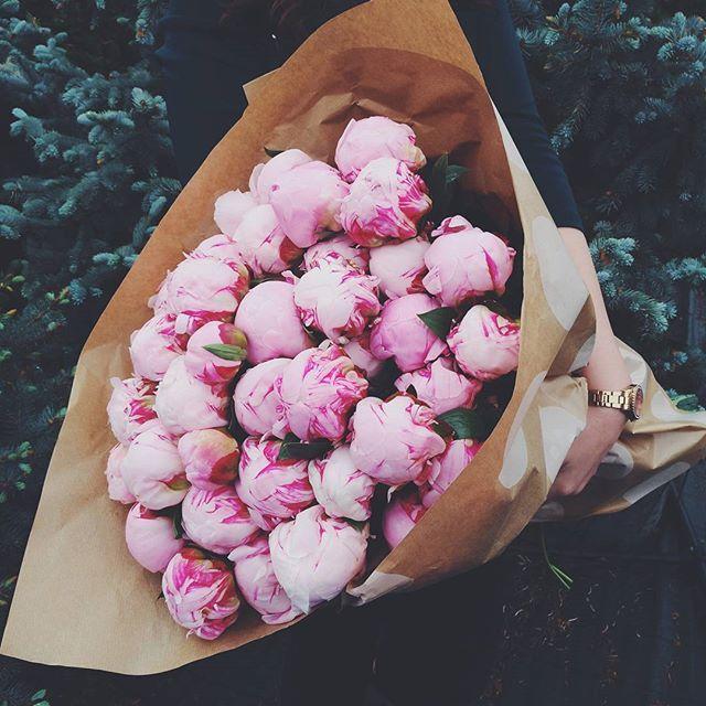 Buchet cu bujori roz ambalat in hartie. Pink peony bouquet in paper wrapping.