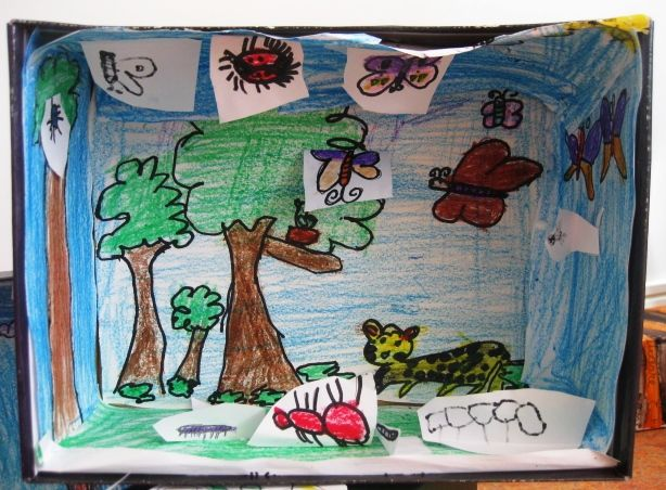 Kids Diorama With Details: Insect Dioramas In Grade One