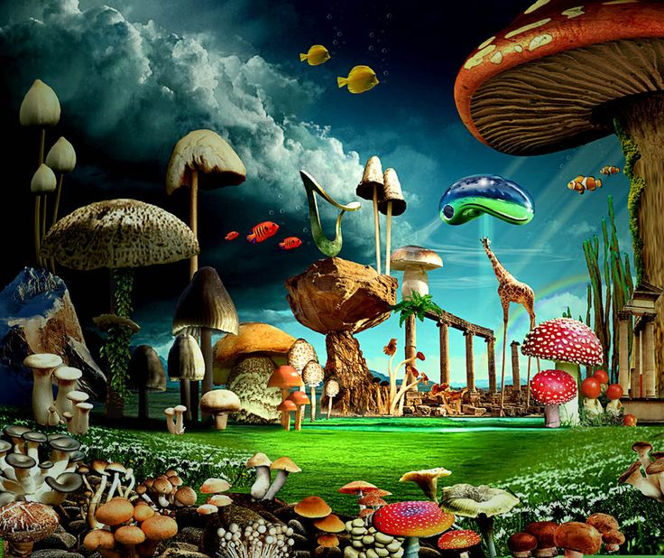 Fantasy Landscape Wallpaper: Mushroom Landscape By ~funkwood On DeviantART