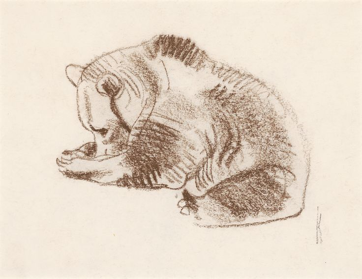 Bob Kuhn   Grizzly Bear   conte on paper