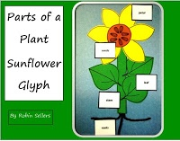Parts of a Plant Glyph