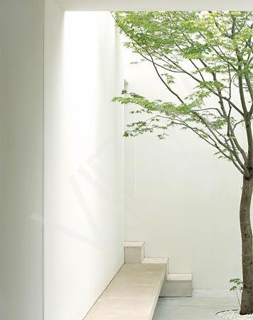 Patio inside John Pawson's Tetsuka House.
