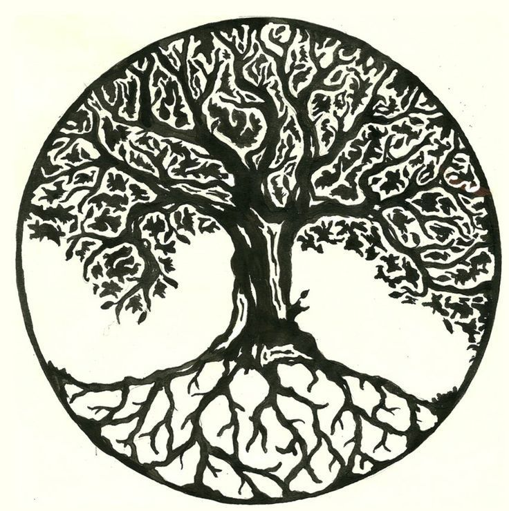 Image result for irish ash tree tattoo