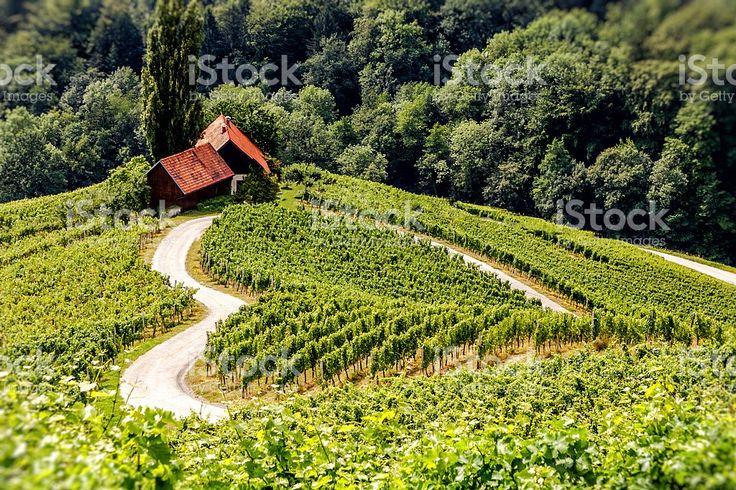 Heart of Slovenia sLOVEenia