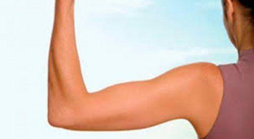 Dans la suite de cet article, nous allons vous présenter plusieurs exercices qui vont vous permettre de faire travailler efficacement vos bras.