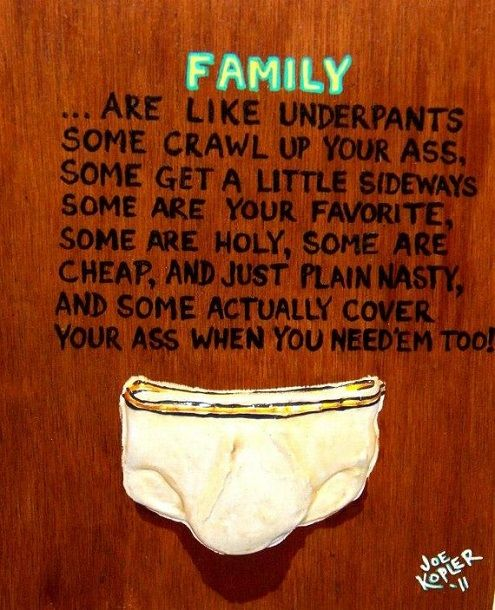Funny Quotes About Family: Best 25+ Funny Quotes About Family Ideas On Pinterest