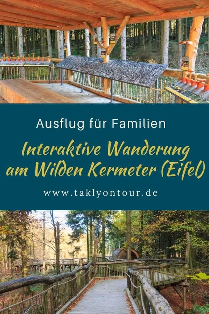 Wilder Weg • Le sentier d'aventure dans le parc national de l'Eifel   – Takly on tour → Der Reise- und Campingblog