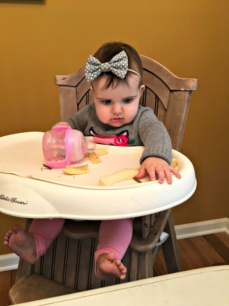 Baby-led weaning {7 months old}
