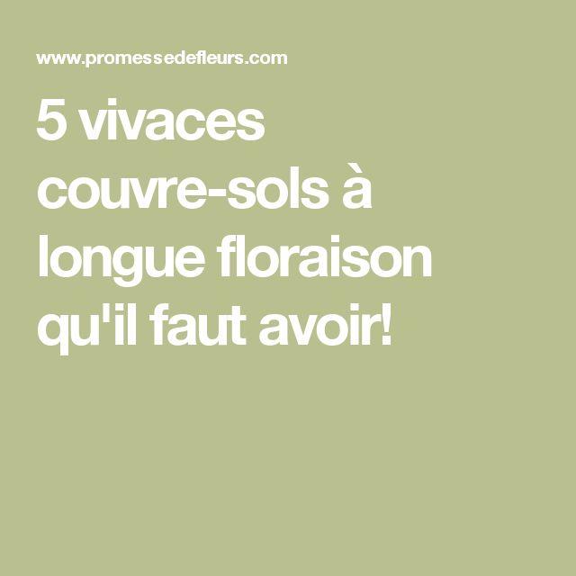 5 vivaces couvre-sols à longue floraison qu'il faut avoir!