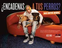 Features | PETA Latino