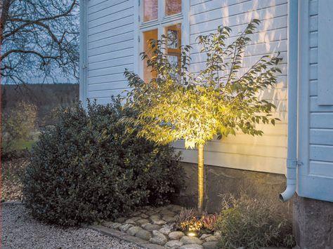 Skapa spänning i trädgården med hjälp av utebelysning för fasad och trädgård. Här är en snabbguide till olika sorters belysning samt tips kring säkerh...