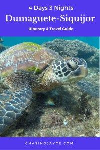 4d3n Dumaguete Siquijor Itinerary Travel Guide Budget