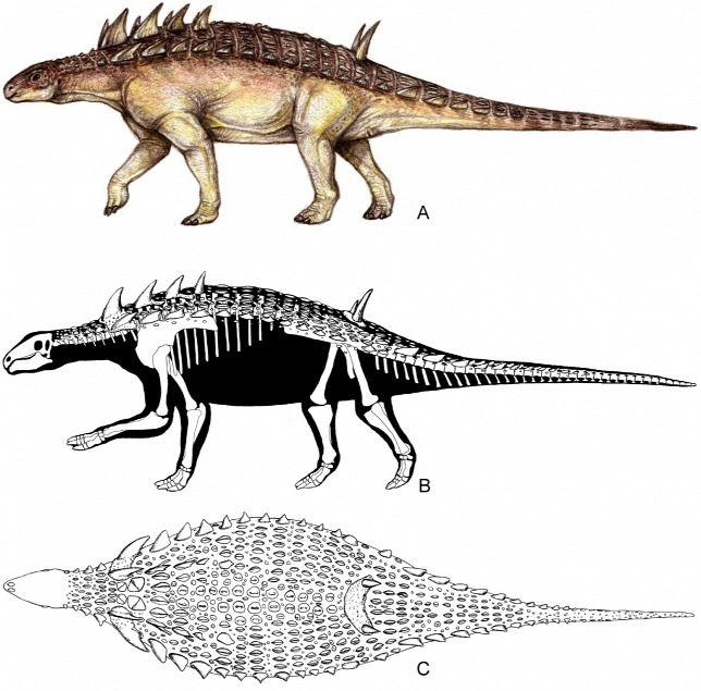 Kiderült, miért pusztultak el a bakonyi dinoszauruszok