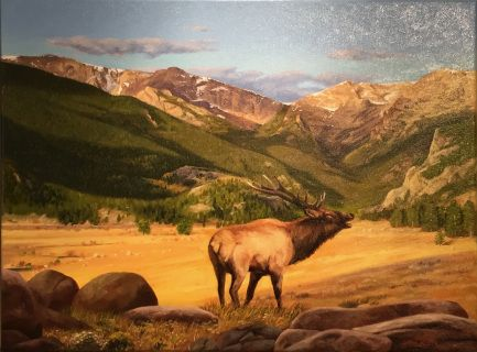 Bugling Elk by Gary Miller oil #landscape #painting #columbinegallery #RMNP #fineart #GaryMiller