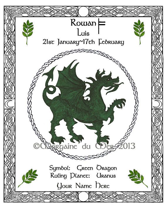 Celtic Animals Symbols And Meanings Clipart Library