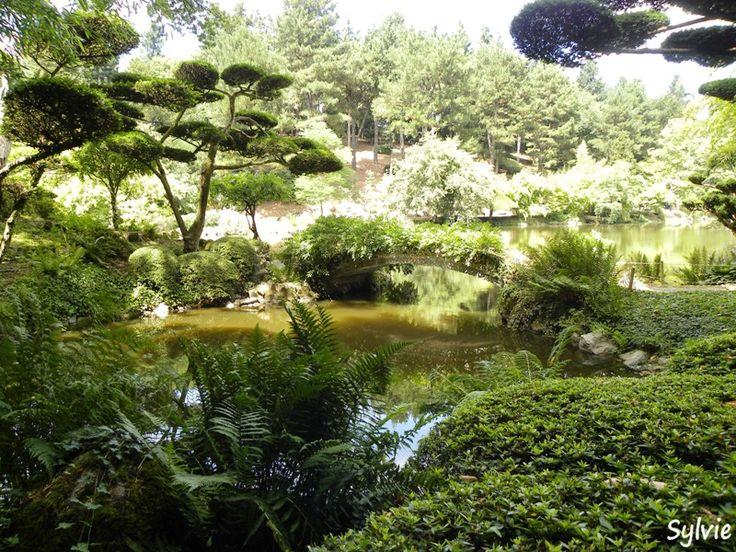Les 122 meilleures images du tableau parc maulevrier sur for Jardin japonais cholet