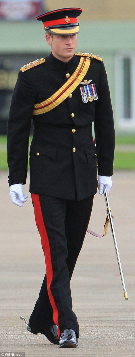 Praise: Prince Harry praised the RAF's 'determination and professionalism' in the fight against terrorism...Nov, 2014