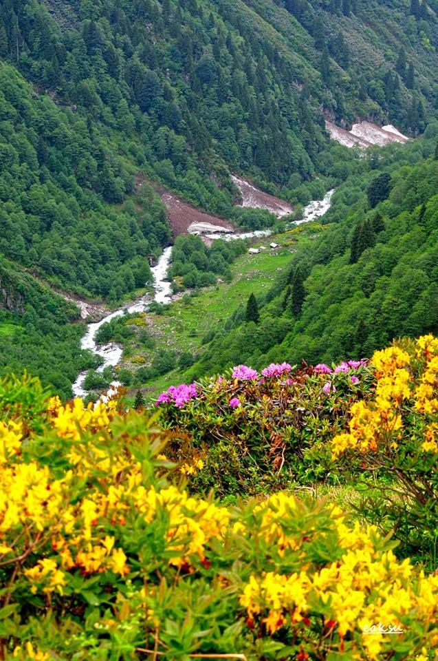 T-Sky's neighbor Artvin- TURKEY