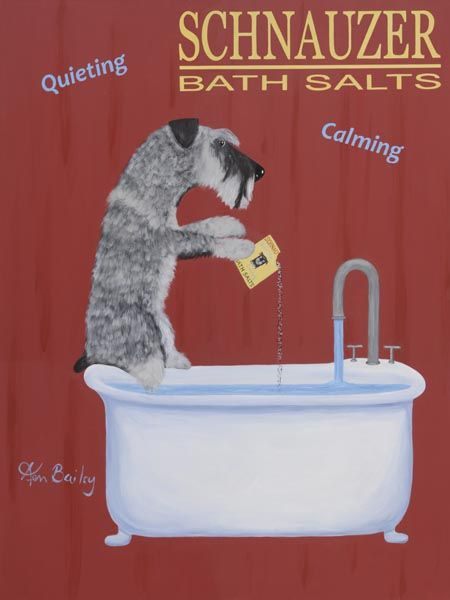 Schnauzer Bath Salts   Fine Limited Edition Print By Ken Bailey
