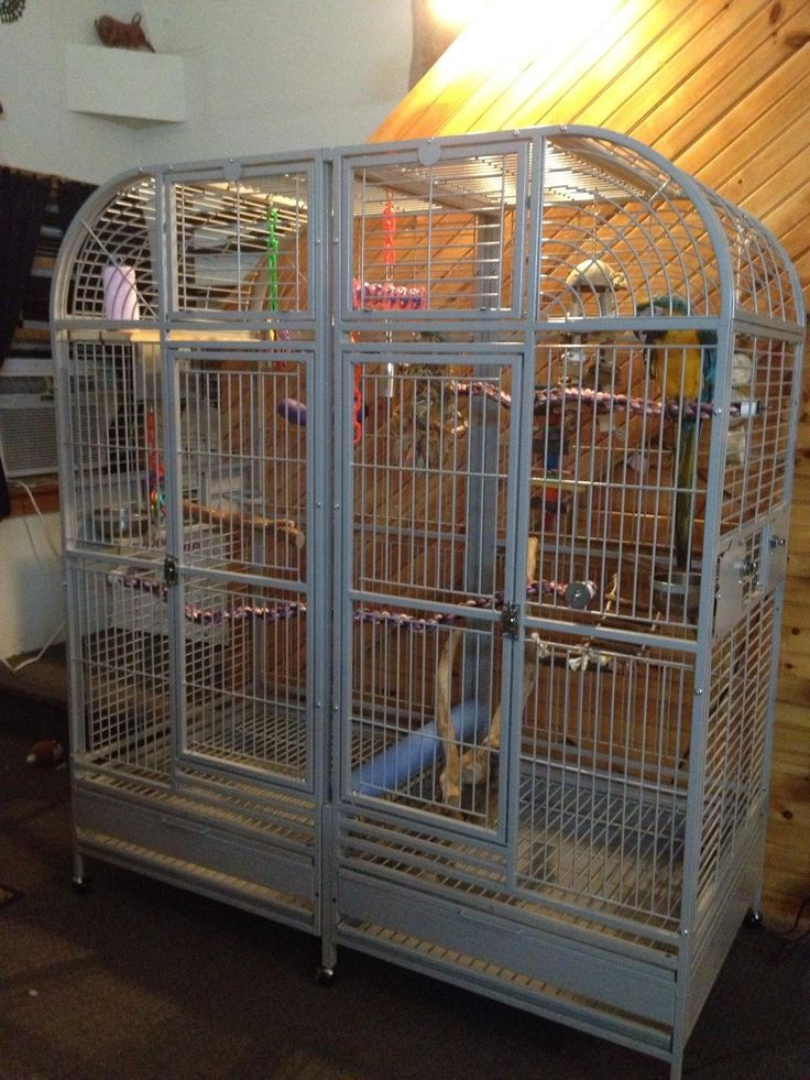 8 Best Parrot Cages Images On Pinterest Parrot Cages