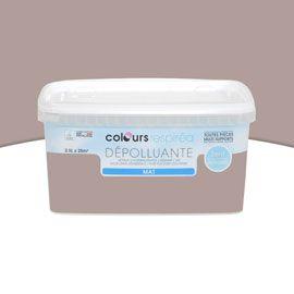 Peinture dépolluante argile mat 2,5L