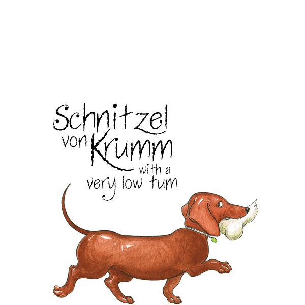 Hairy Maclary's friend - Schnitzel von Krumm with a very low tum